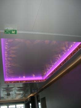 天井のライト 紫(船の後方)