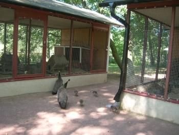 djurparken.jpg