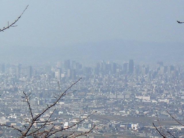 二上山からの眺め 大阪
