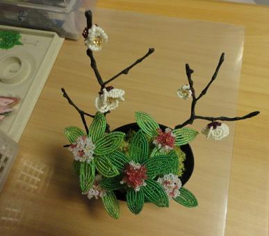 キット「梅と沈丁花」で④