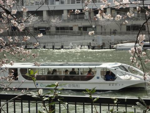 天満橋から銀橋への川端③