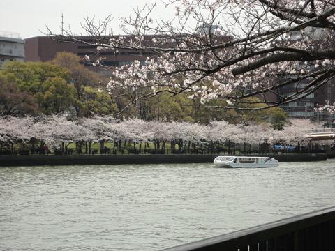 天満橋から銀橋への川端⑥
