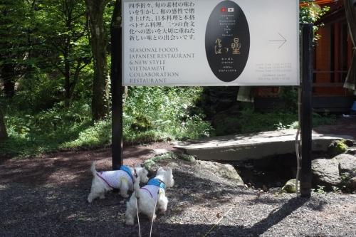 oiboshidelunchi1.jpg
