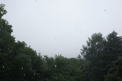taifu11gounoamede1.jpg