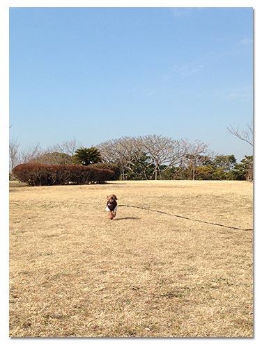 14_3_1_2.jpg
