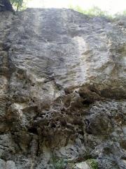 2014-06-01 中里 木古里岩 010 (600x800)