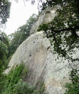 140729岩1