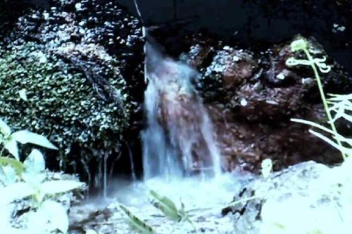 DSC00467菊水泉