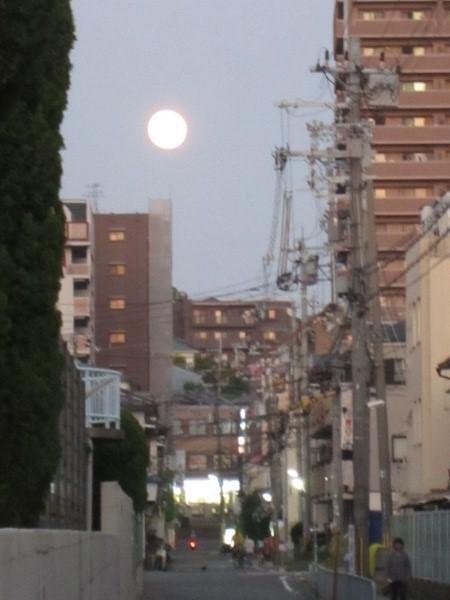 けいたろうブログ-中秋の名月