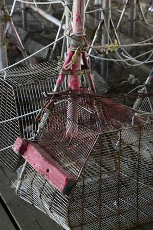 2011-10-08 華3155