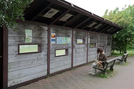 2011-10-08 華3356