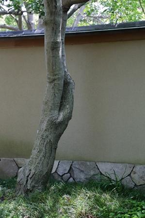 2011-10-08 華3394