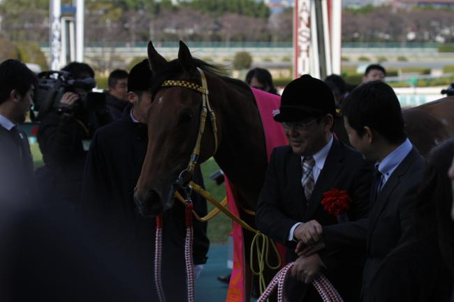 ハープスター チューリップ賞4