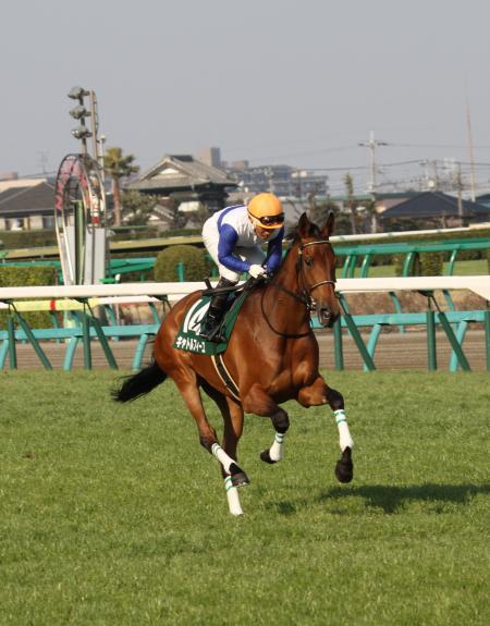 キャトルフィーユ 中山牝馬S1