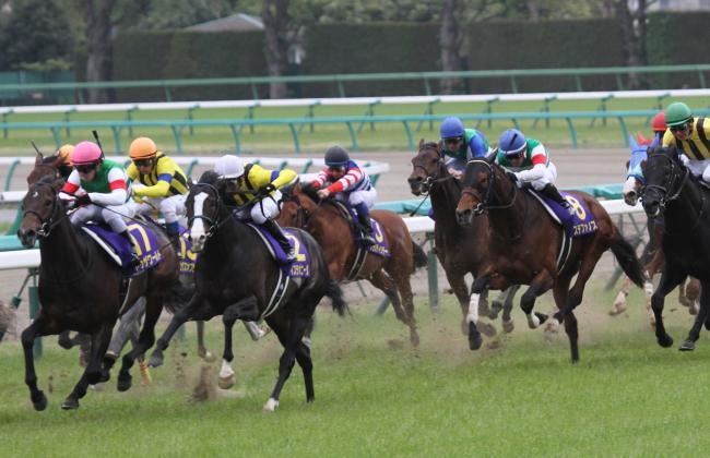 2014皐月賞2