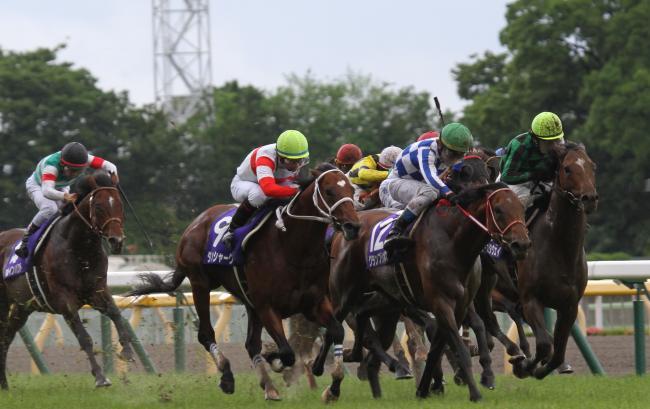 2014安田記念レース3