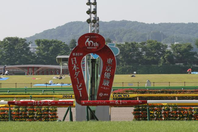 東京競馬場 2014日本ダービー ゴール板