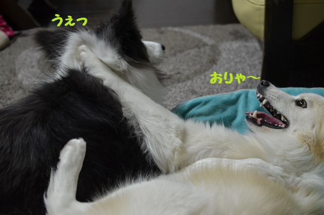 2014-03-06-03.jpg