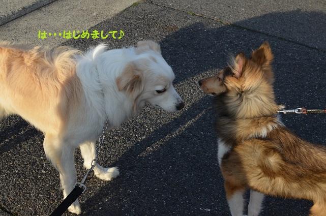 2014-03-08-15.jpg