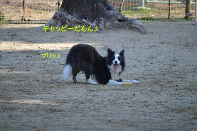 2014-03-08-3.jpg