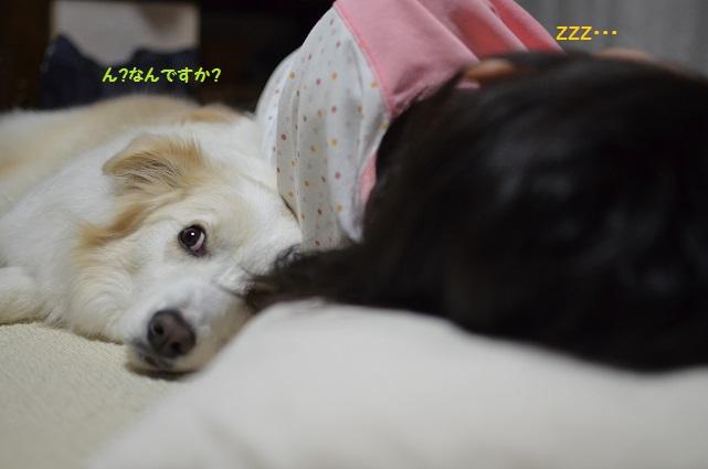 2014-03-14-3.jpg
