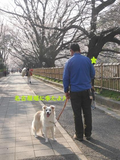 2014-03-29-01.jpg