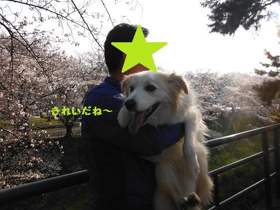 2014-03-29-03.jpg