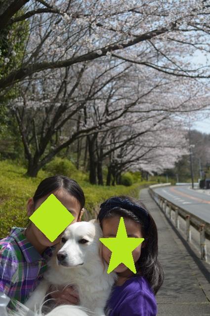 2014-04-01-01.jpg