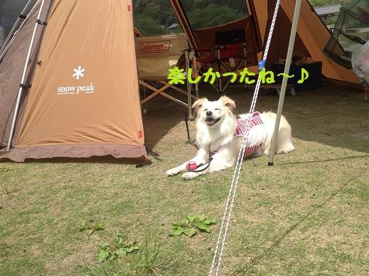 2014-05-04-7.jpg