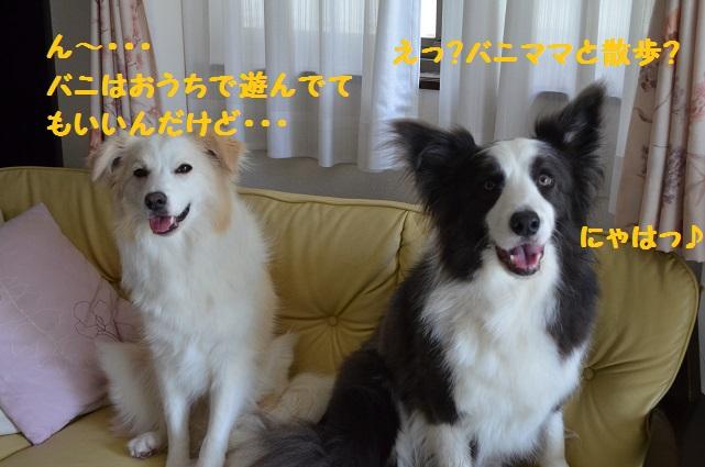 2014-06-23-01.jpg