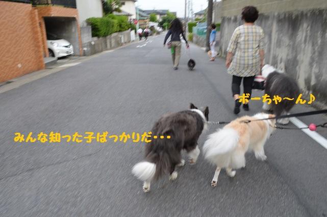 2014-06-23-04.jpg