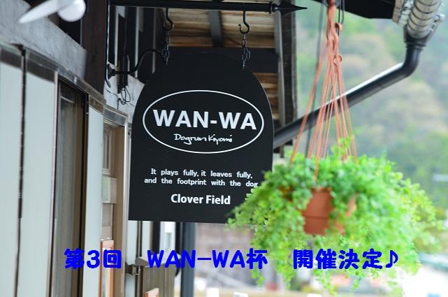 WAN-WA-3-2.jpg
