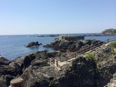 遊歩道から海を眺める