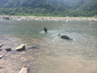 川で塩抜き