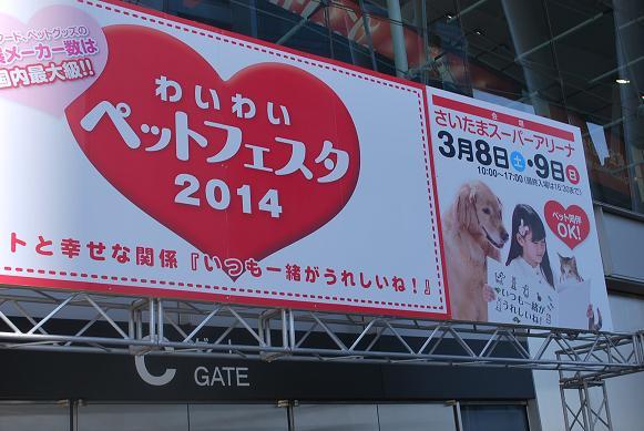 20140308DSC_1248.jpg