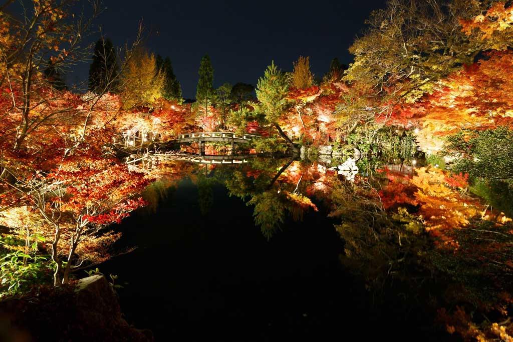 eikando_night.jpg