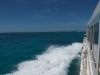 高速船から平らな黒島が見えてきました!