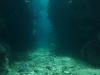鳩間沖~水深10m、回りは暗くなるんですね。