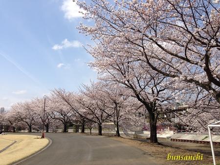 日高運動公園