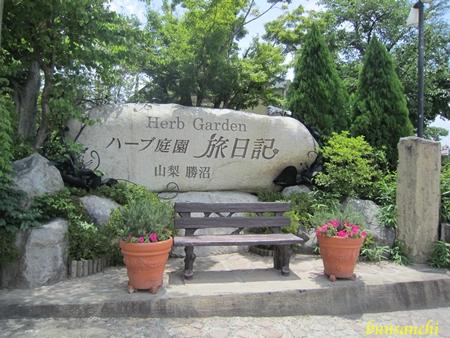 ハーブ庭園②