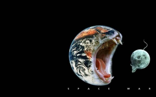 おかしい猫の惑星
