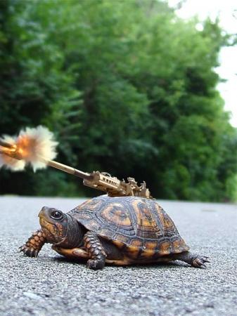 turtle_cannon_by_abandonmokuba-d2z5nmi.jpg