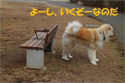 s-140423-2.jpg