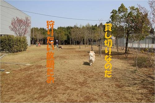 s-140501-4.jpg