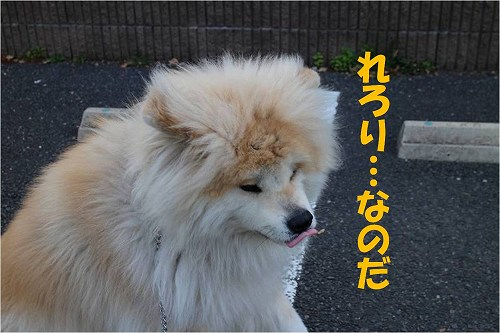 s-140606-6.jpg