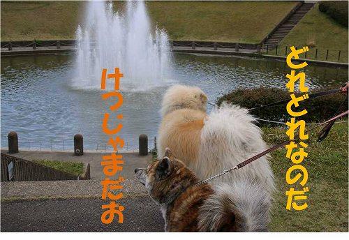 s-140609-3.jpg