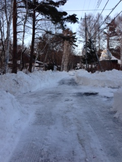 0221大雪市道