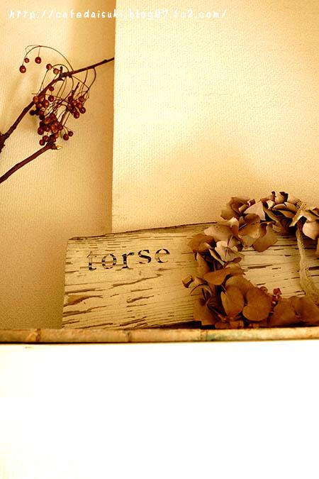 torse>