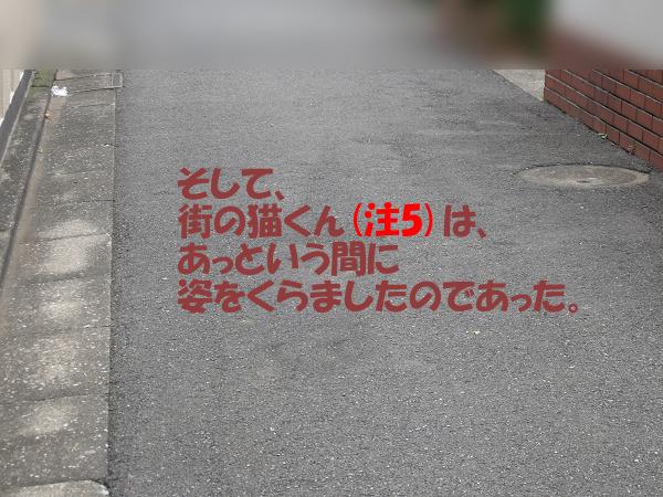mc-140718i.jpg