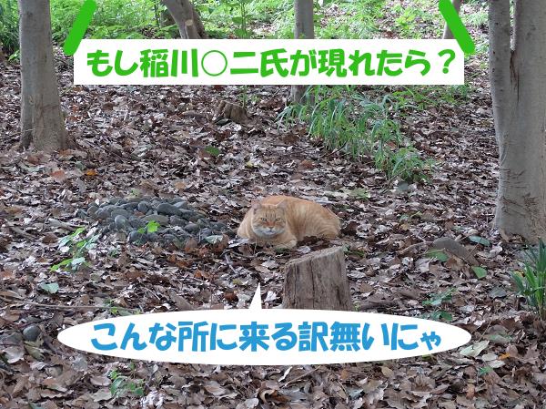 もし稲川○二氏が現れたら?